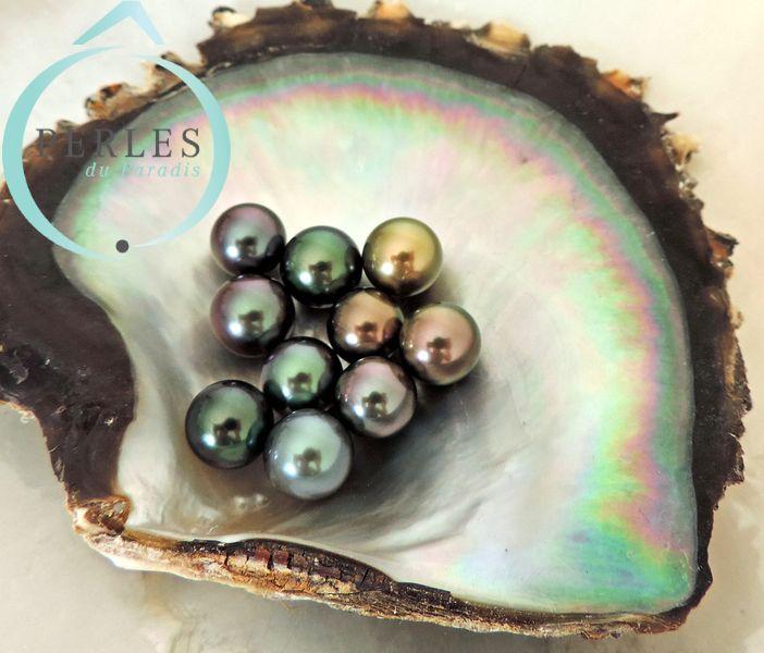 Lot de perles de culture de Tahiti reçu par Ô Perles du Paradis