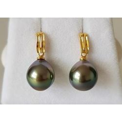 Perles Exquises - Boucles d'Oreilles en Or Jaune et Véritables Perles de Tahiti