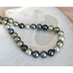 Princesse des Ô - Collier en Véritables Perles Rondes de Tahiti