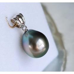 Poenui - Pendentif + Chaine forçat Or 18 carats et Perle de Tahiti