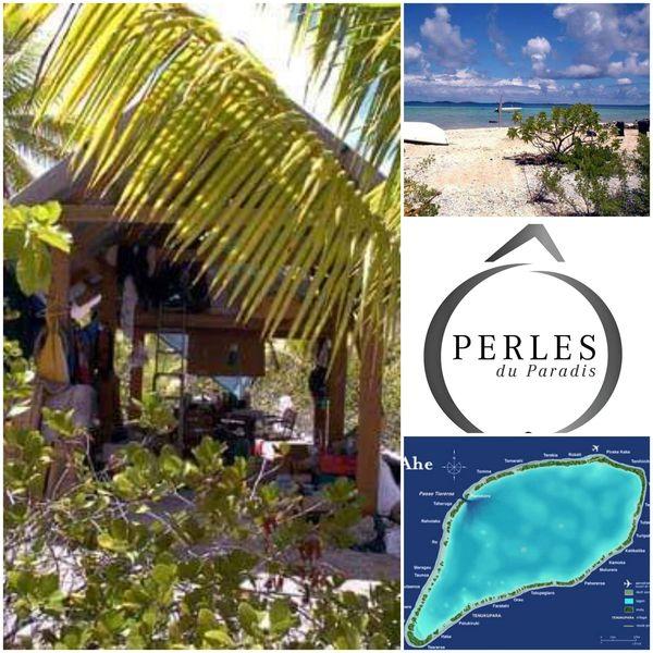 Comment vivre et créer une ferme perlière aux Tuamotu - le récit de l'expérience de Nathalie Le Gloahec